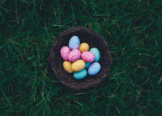 eggs-1245720_1920